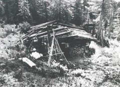 The Lykov Cabin
