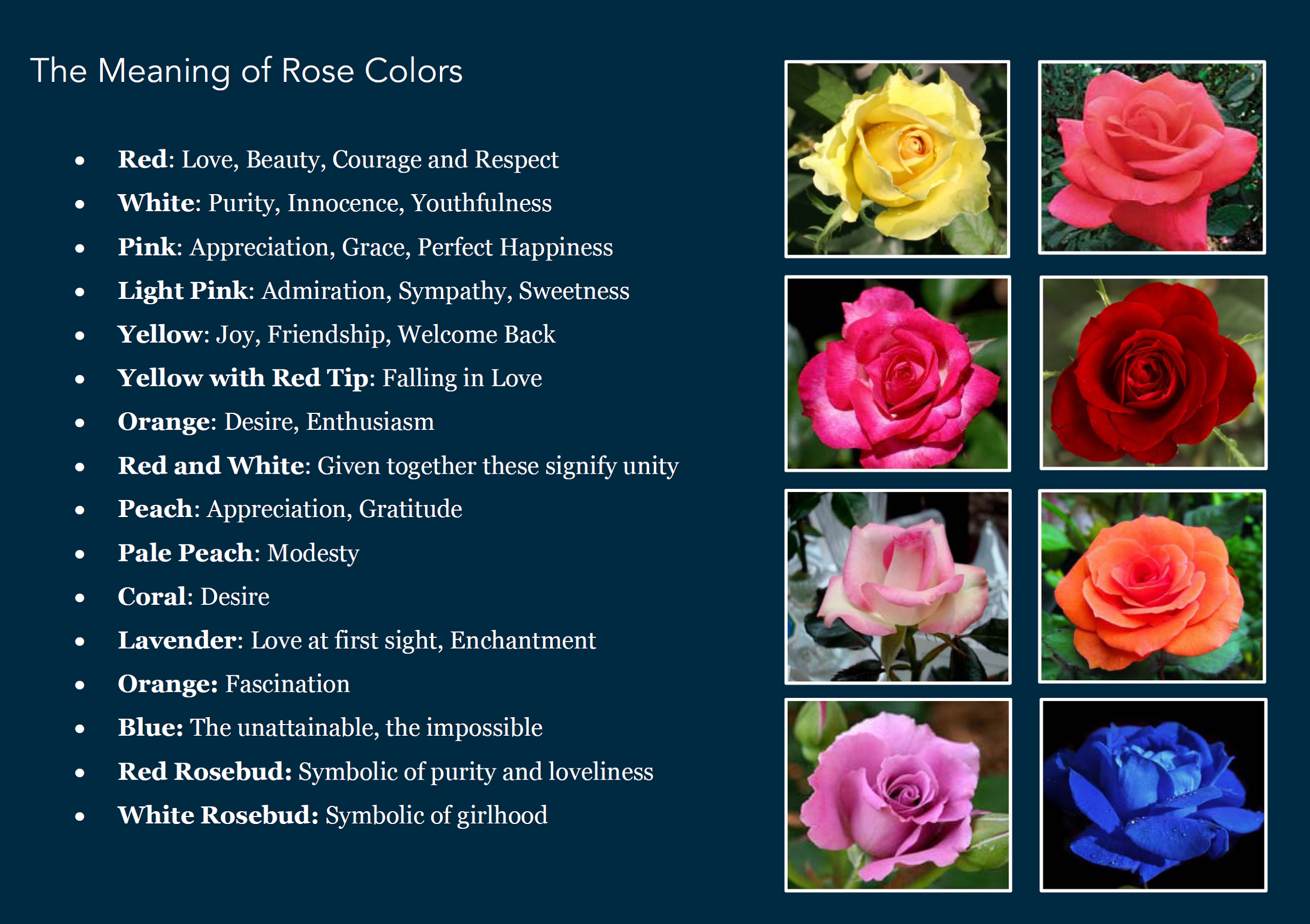 State flowers the flneurs turtle rose color meaning izmirmasajfo Choice Image